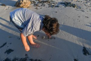 Cute little boy picks up rocks on the dark sand in Fiji