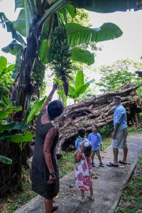 Mixed race family walk through tropical rain forest in Fiji