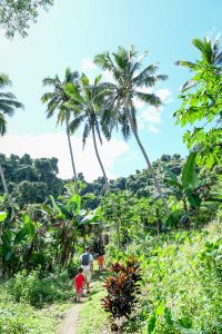 Tropical rainforest in Fiji captured by Fiji photographer Anais Chaine