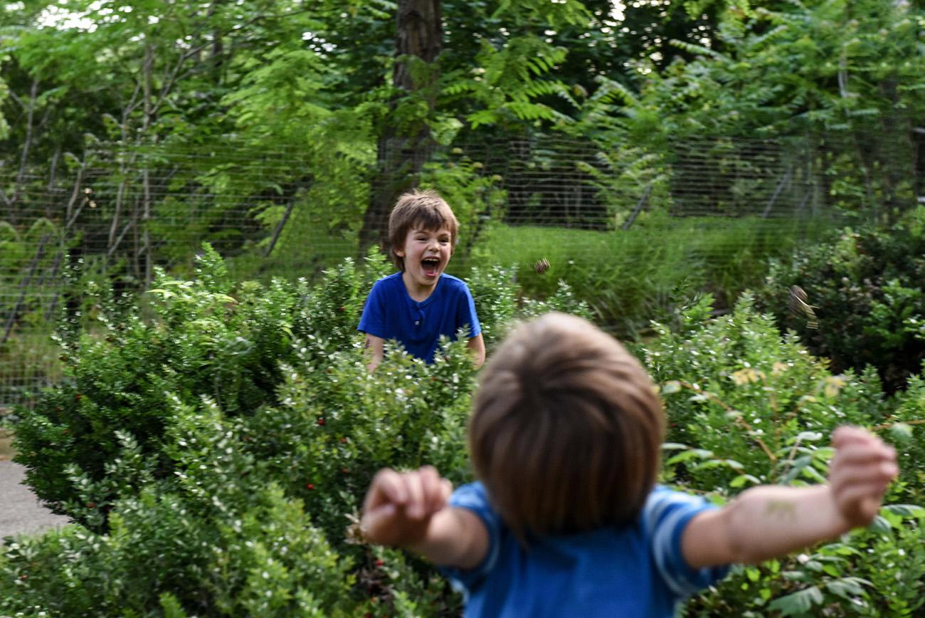 battaille de pommes de pins dans le parc